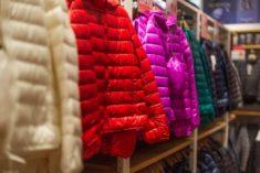 Kolorowe kurtki